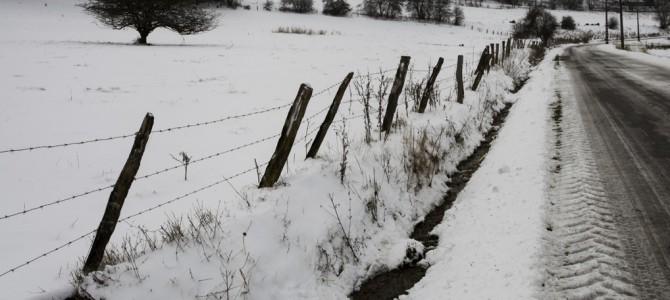Winter in Dochamps